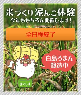 米づくり泥んこ体験