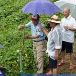米づくり泥んこ体験2-14